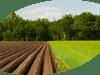 Жидкости для защиты растений